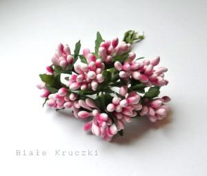 Pręciki - gronka w kiściach - różowe - 10 gałązek